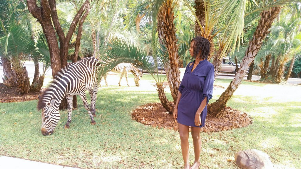 Travel solo in Zambia