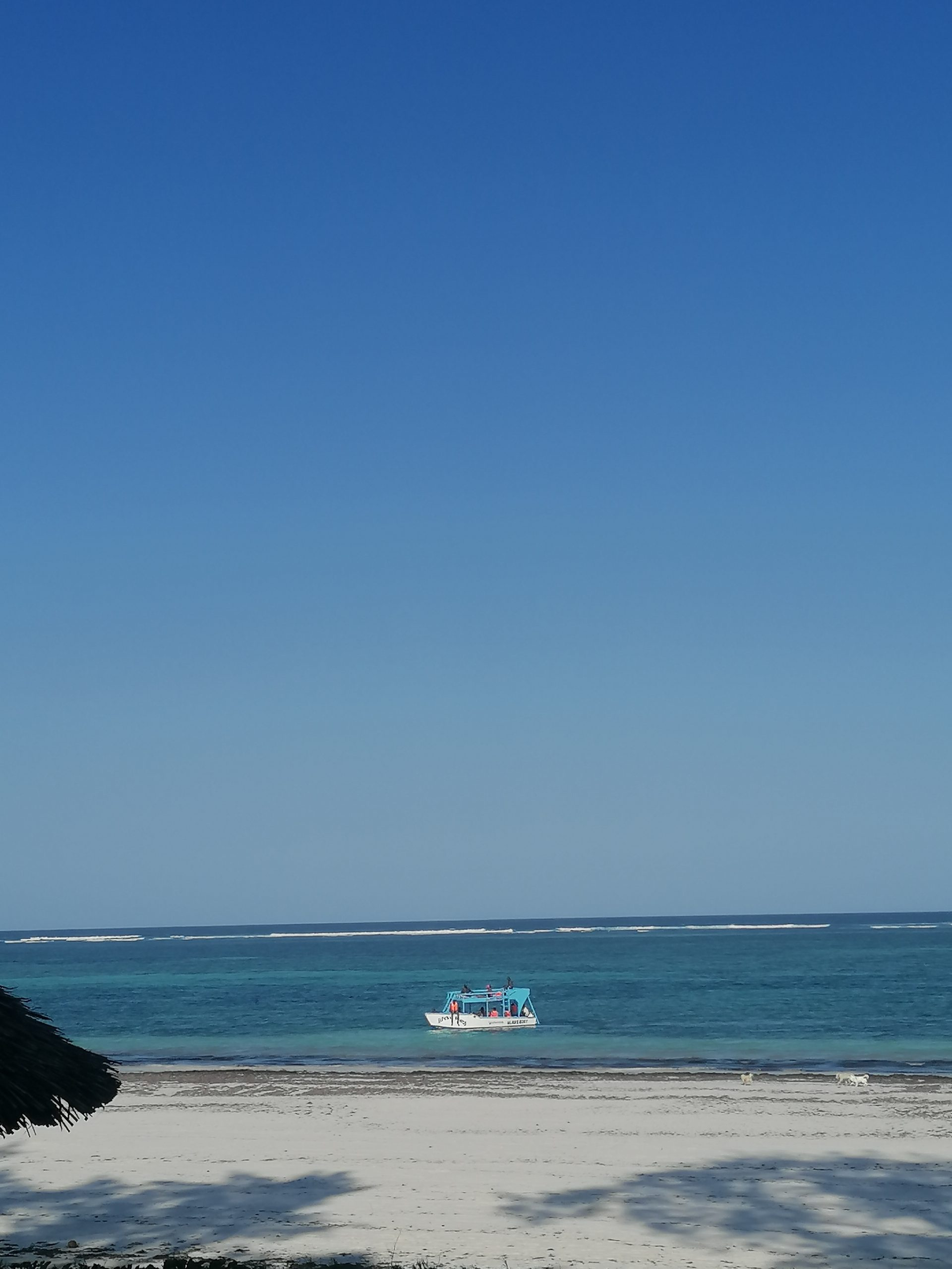 Things to do in Diani